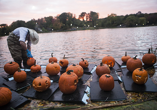 The Best Halloween Events for Kids in NYC