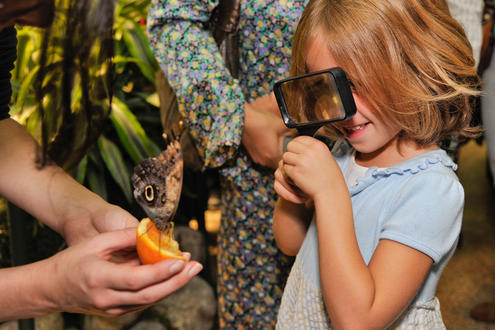 The Butterfly Conservatory Opens October 12