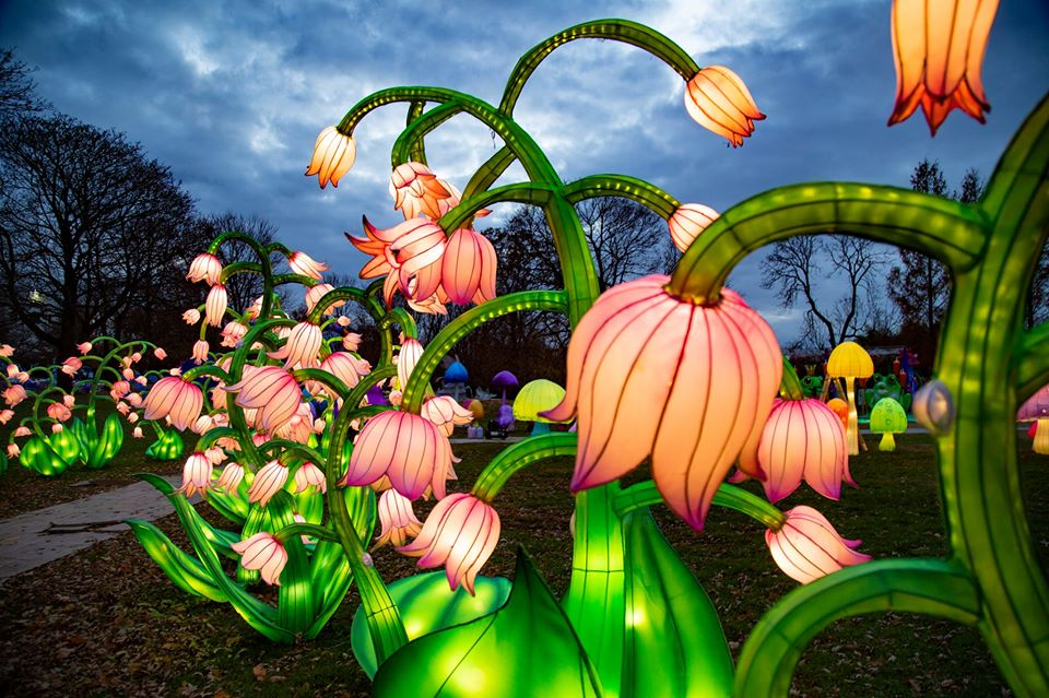 Winter Lantern Festival at Snug Harbor Cultural Center & Botanical Garden
