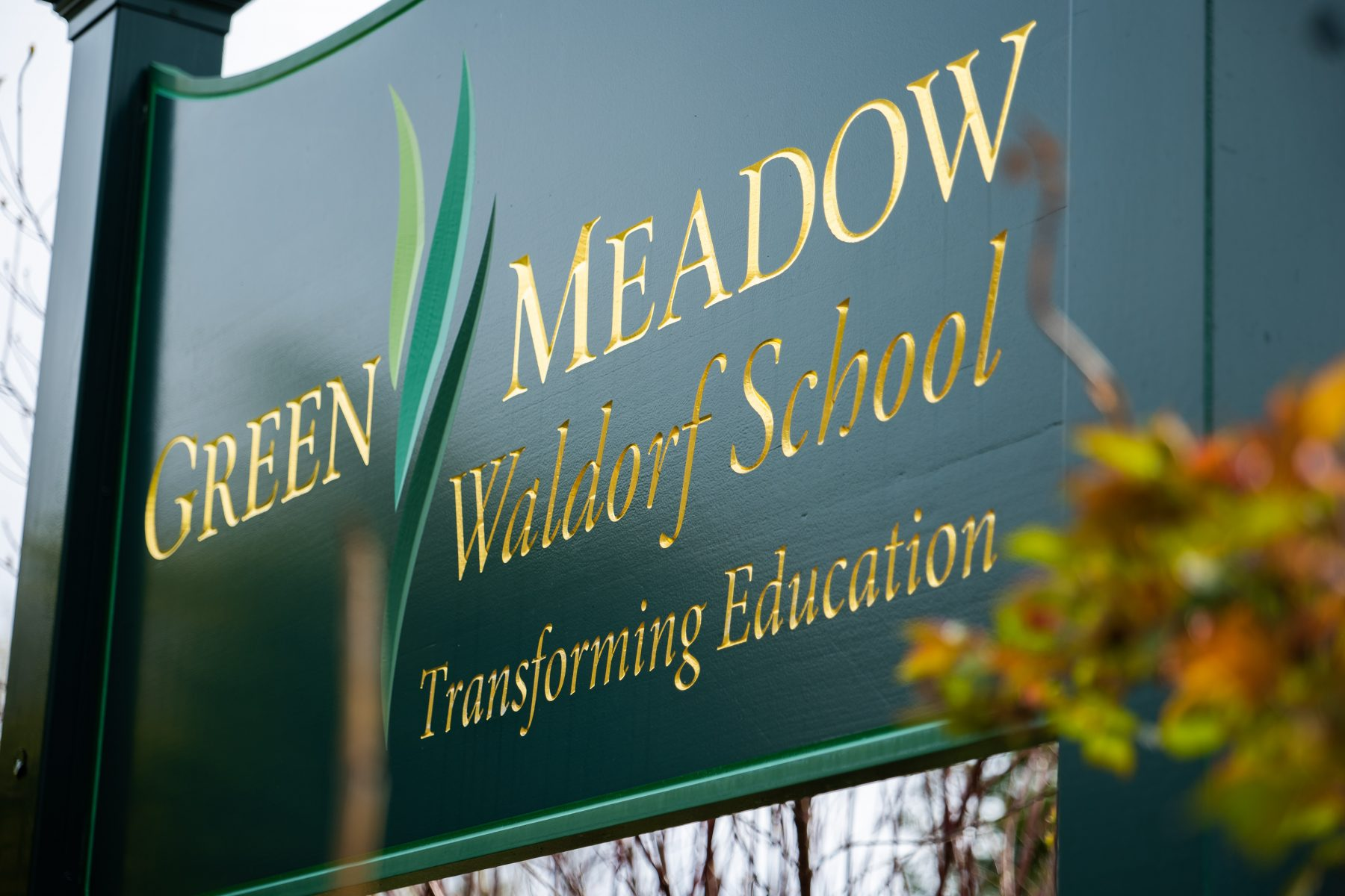 Discover Green Meadow Waldorf School