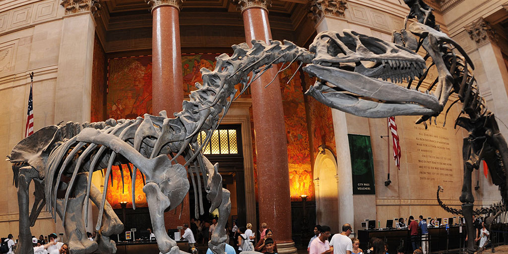 Explore & Learn Online with American Museum of Natural History