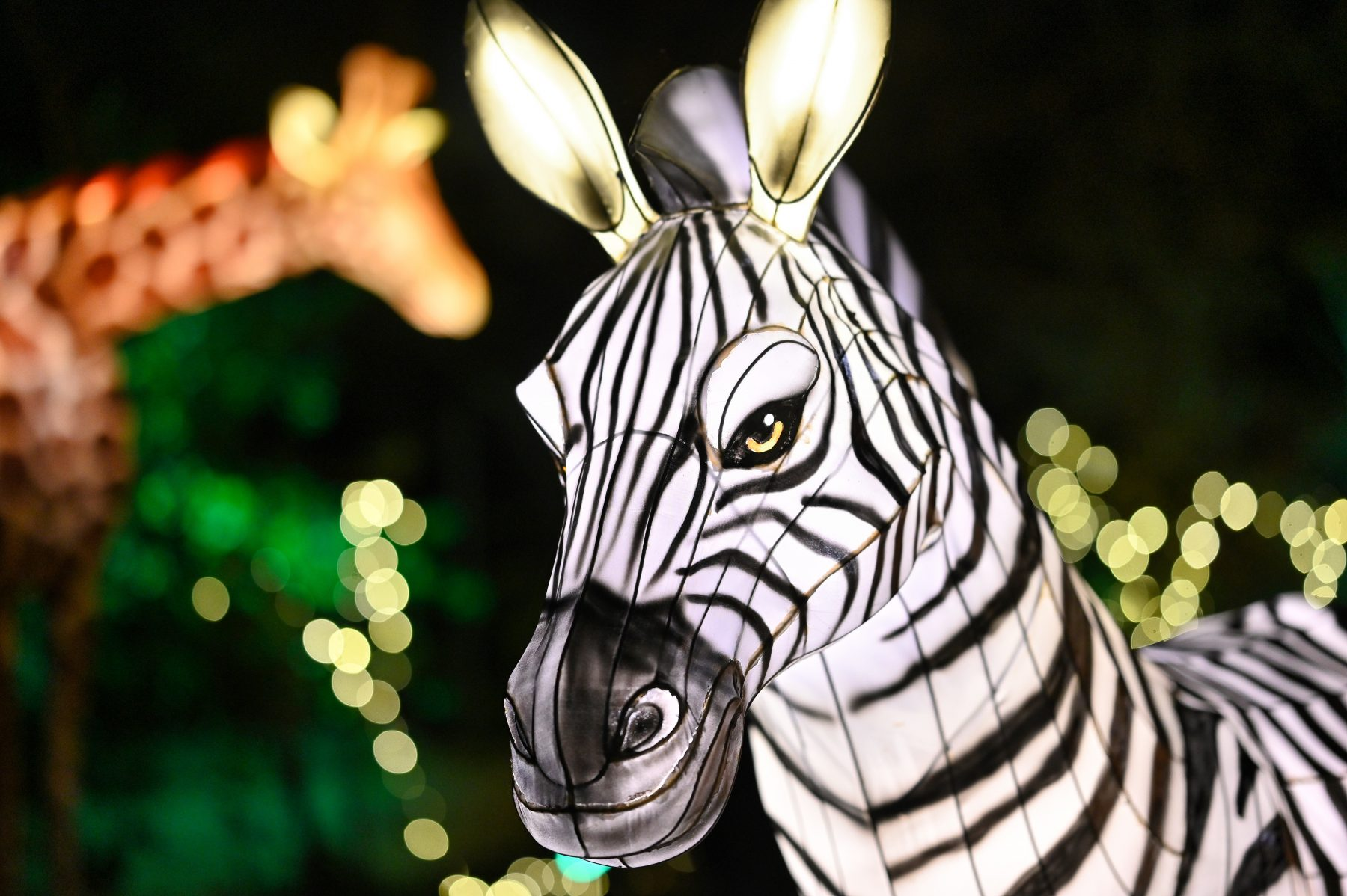 Holiday Lights to Return to the Bronx Zoo Starting Nov. 20