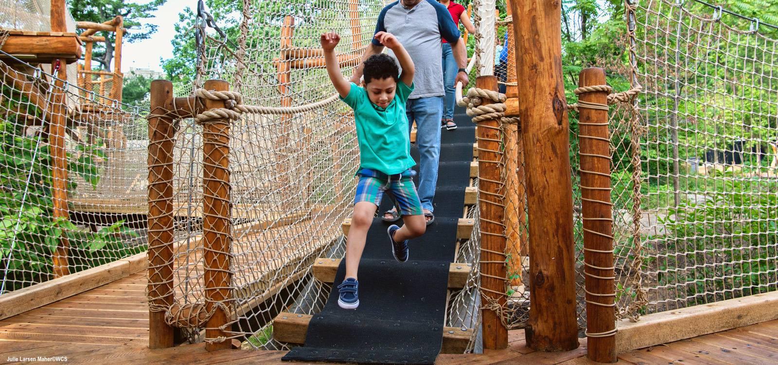 Summer Camp at Bronx Zoo