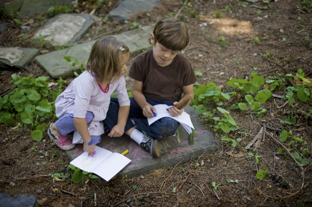 Family Art Project: Unfurling Field Journals and Sonic Field Notes