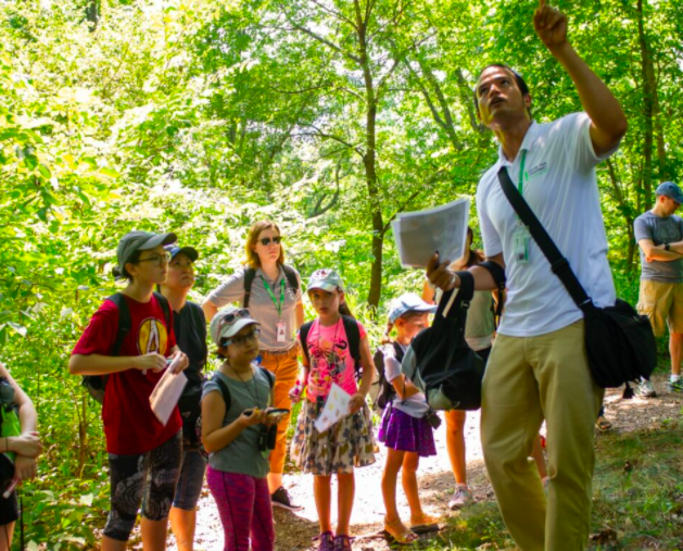 Discovery Walks for Families: The North Woods