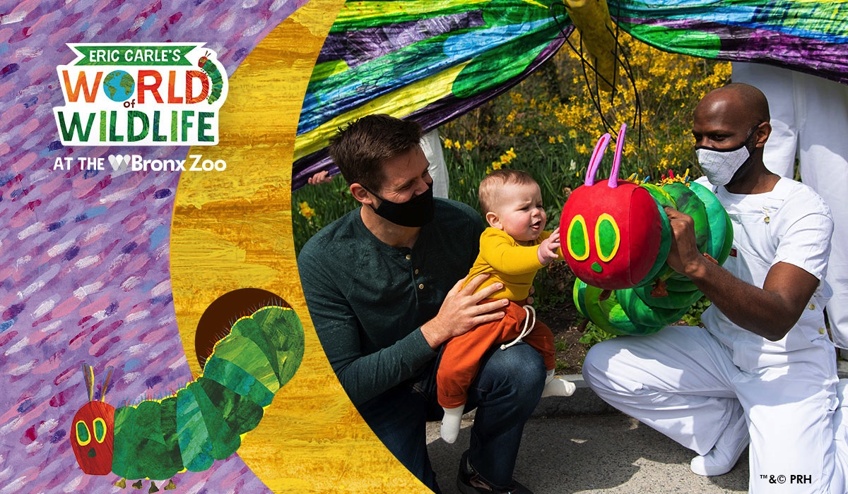 LAST WEEK for Eric Carle's World of Wildlife at Bronx Zoo