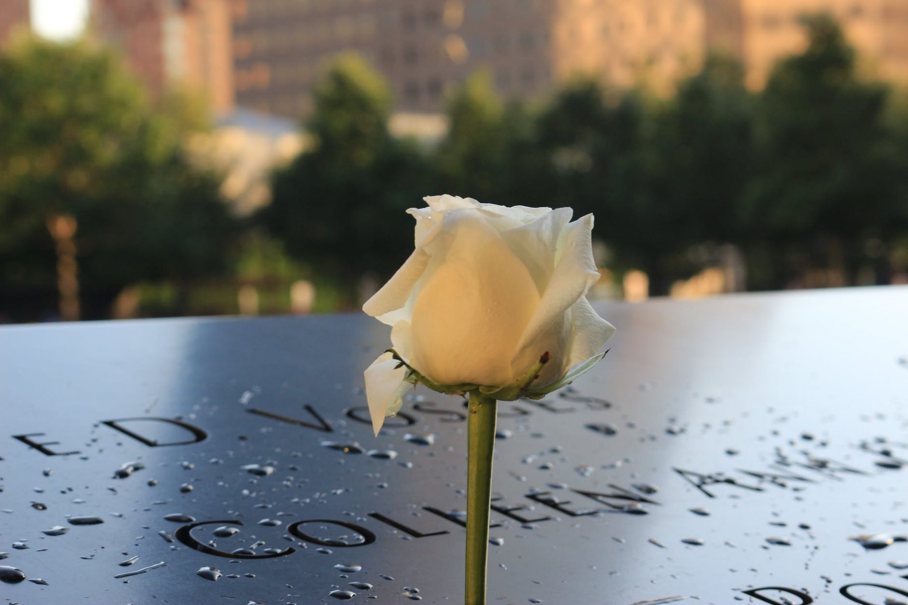 Remembering September 11 in NYC 20 Years On