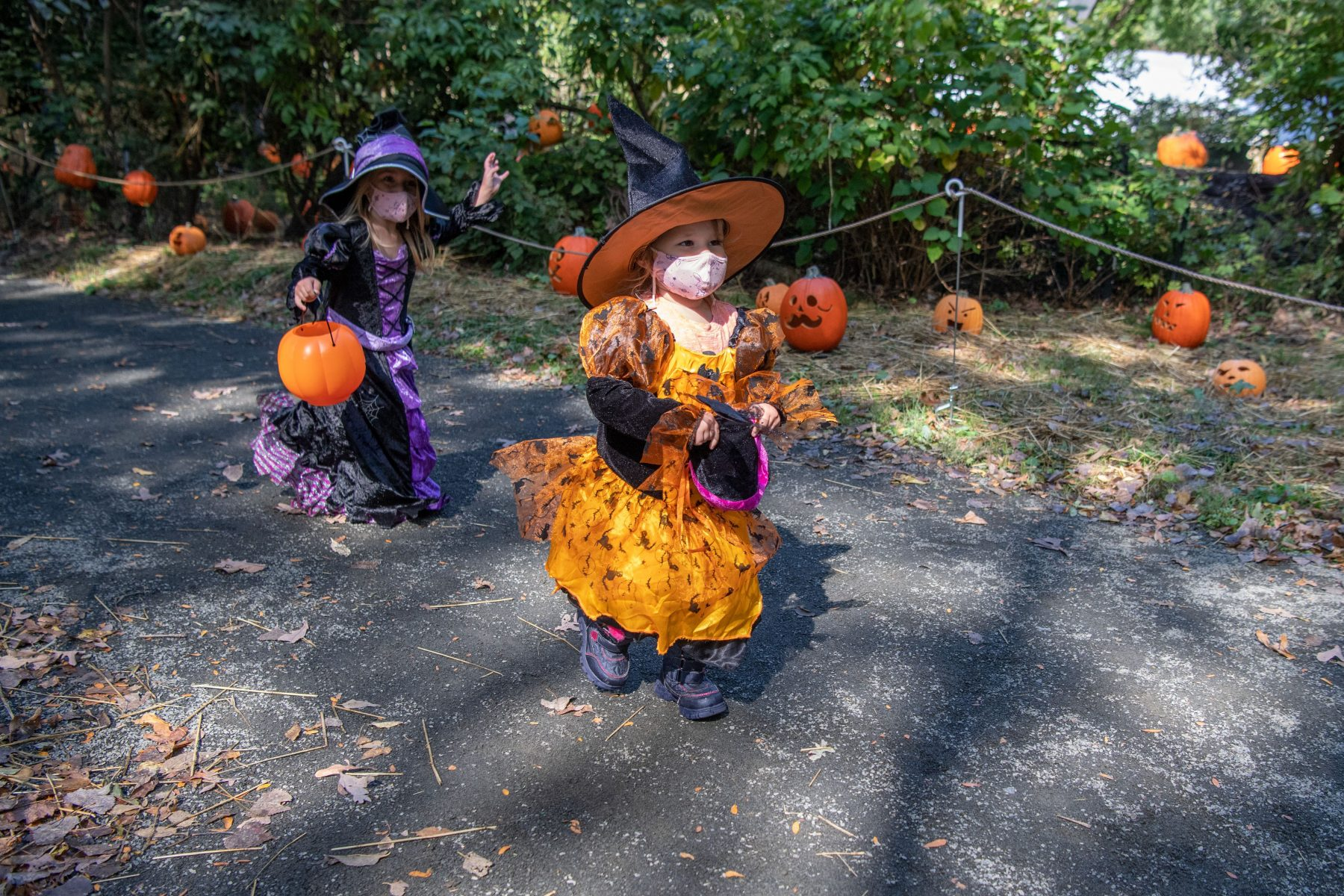 Fall Favorite BOO at the ZOO To Feature Halloween-Themed Activities at the Bronx Zoo