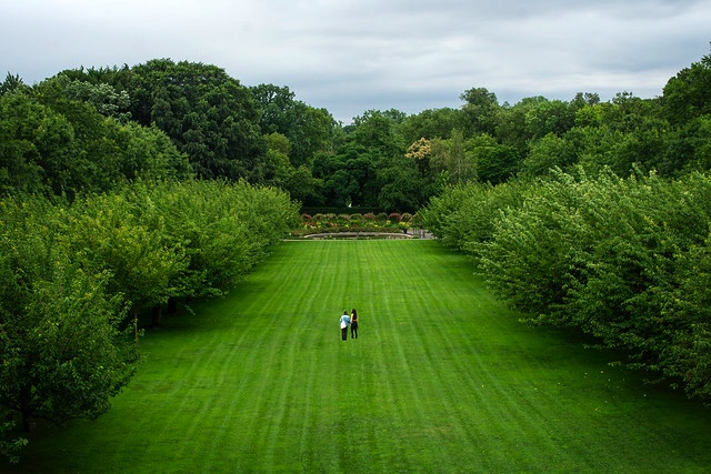 Complimentary Admission to Brooklyn Botanic Garden on September 11